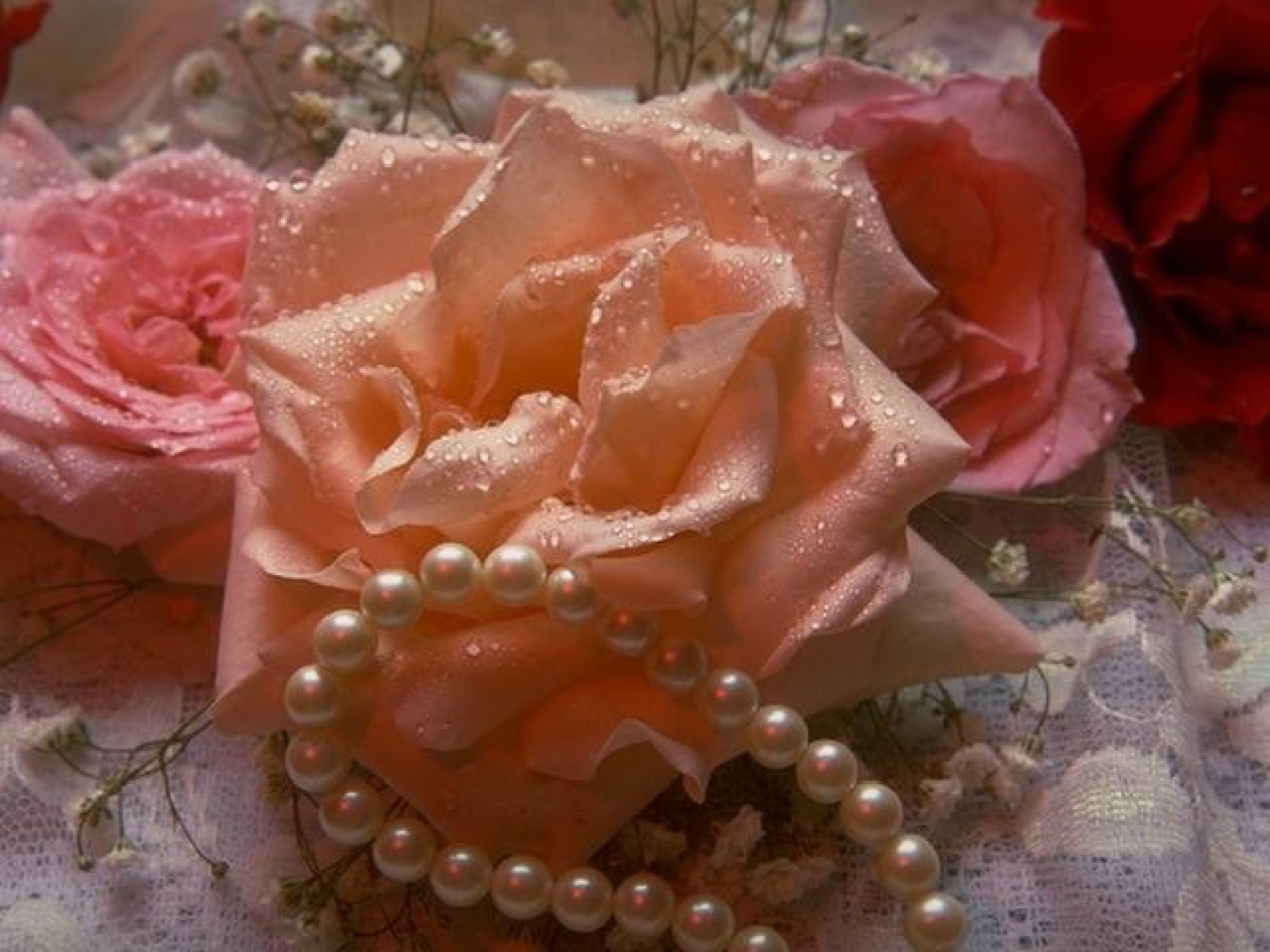 roses and pearls - photo #10